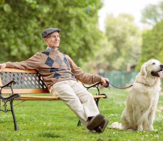 old man sitting with a dog on a bench in park when her heat is finally over