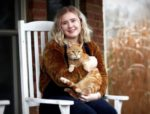 Adult cat vs kitten: things to consider when getting a cat
