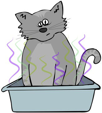 Cat litter box odor