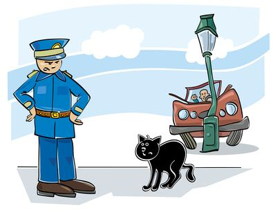 Outdoor cats tend to get in accidents more often than indoor cats