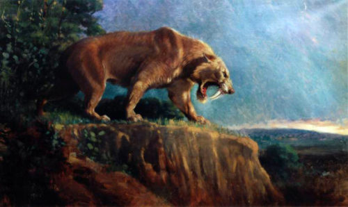 Smilodon - the saber toothed cat