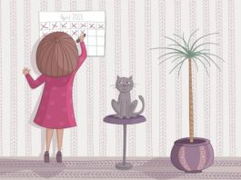 Checking cat heat cycle frequency in calendar