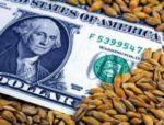 "Big fat lie behind the ""grain free"" cat food"