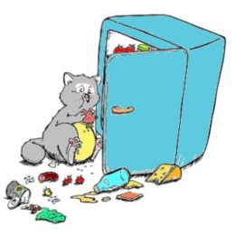 overfeeding is amongst most common causes of obesity in cats