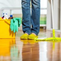 How to remove cat urine stains from different materials