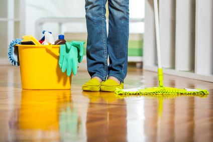 Cleaning cat urine from floor