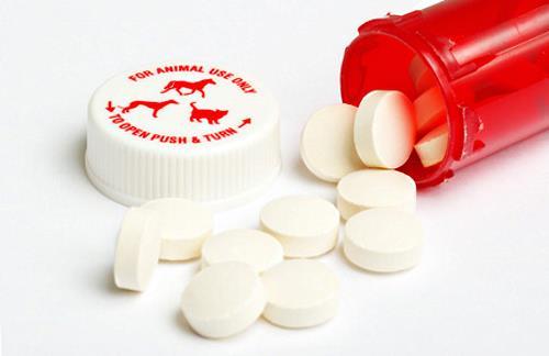 Veterinary pills