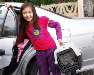 Girl taking her cat in a car