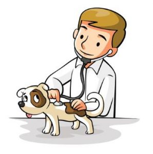 cartoon of a dog checked by a veterinarian