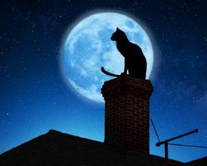 black cat siting on a chimney with a full moon in a background