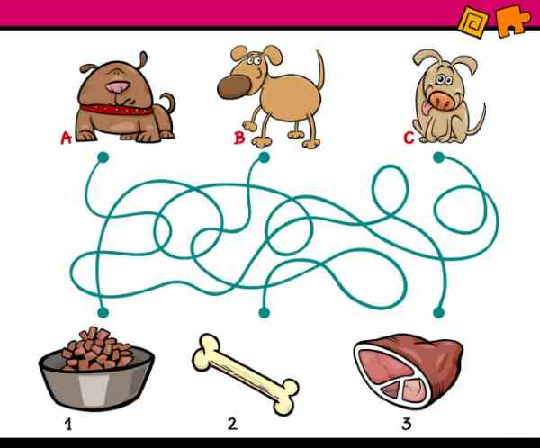 dog food maze