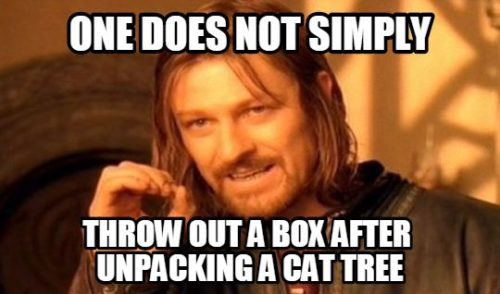Meme: one does not simply throw out a box after unpacking cat tree