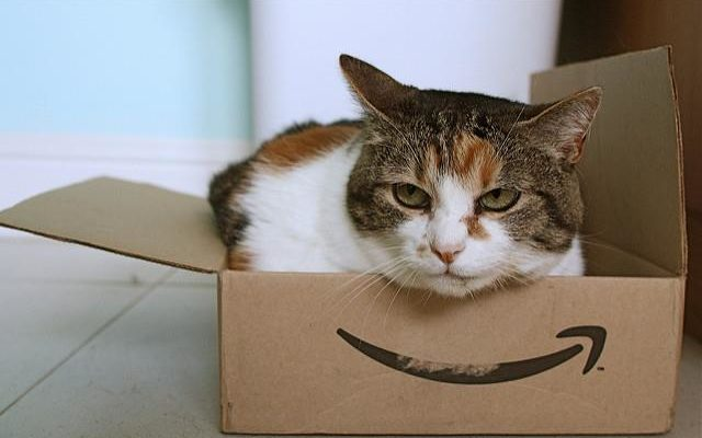 cat sitting in a small amazon cardboard box