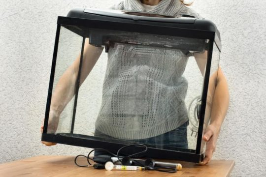 woman placing empty aquarium on the table with heater filter and thermometer