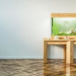 Aquarium placed on a table