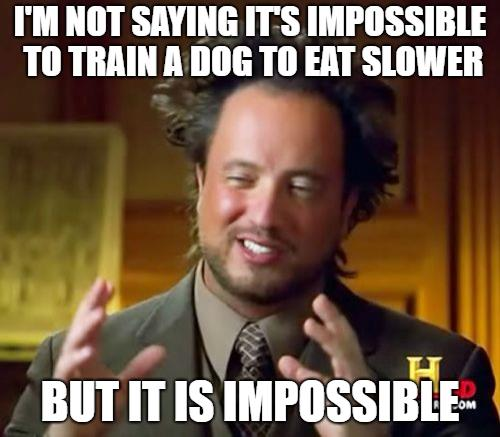 dog eats too fast ancient aliens meme