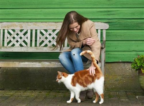 woman interacts with a cat