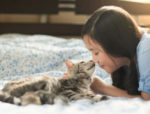 How do cats recognize their owners